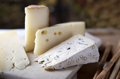 Cheese and Grissini Stock Photography