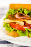 Cheese and ham sandwich with fresh vegetables and mayonnaise Stock Image