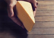 Cheese in hands Stock Image