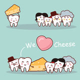 Cheese is healthy for tooth Royalty Free Stock Image