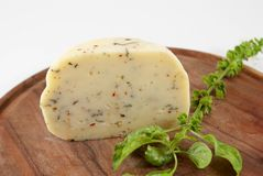 Cheese with herbs Stock Photography
