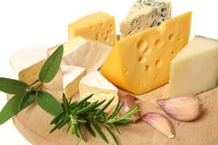 Cheese and herbs Stock Photos