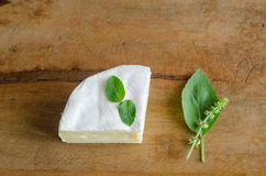 Cheese with herbs. Ingredients in wood table Royalty Free Stock Photo