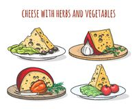 Cheese with herbs and vegetables. Doodle cheese dishes with tomatoes, olives and salad vector illustration Royalty Free Stock Image