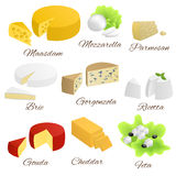 Cheese isolated food set different types illustration Royalty Free Stock Images