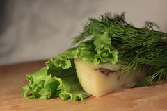 Cheese on a leaf of salad Royalty Free Stock Image