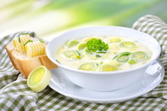 Cheese and leek soup Royalty Free Stock Photo