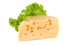 Cheese with lettuce Stock Photography