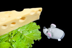 Cheese, lettuce and mouse Stock Images