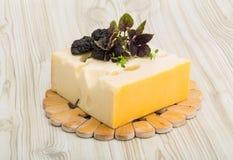 Cheese maasdam Stock Photos