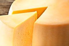 Cheese. Macro Stock Image