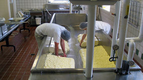 Cheese Making at Shelburne Farms VT. Workers making cheese at Shelburne Farms in Shelburne Vermont which has education programs for children about farm Royalty Free Stock Image