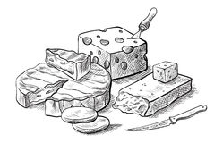 Cheese making various types of cheese set of vector sketches. On a white background Stock Photos