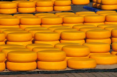 Cheese on market Stock Image