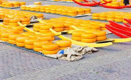 Cheese market in Alkmaar, The Netherlands Stock Image
