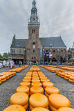 Cheese Market Alkmaar Royalty Free Stock Photo