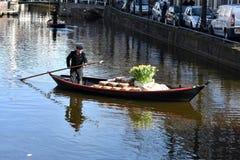 Cheese market in Alkmaar Stock Photography