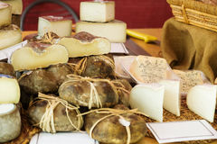 Cheese at market counter. Caprine cheese at market counter royalty free stock images