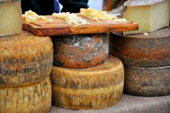 Cheese market in Florence,  Italy. Traditional Italian cheese on sale in an organic products market. tuscan foood in Florence, Italy Stock Images