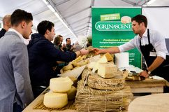 Cheese on a market stall stock photos