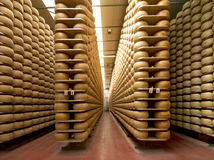 Cheese maturing storehouse Stock Photo