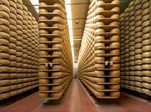 Cheese maturing storehouse Stock Photo