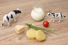 Cheese and milk Royalty Free Stock Photo