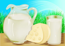 Cheese, milk, jug Stock Photography