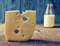 Cheese and milk on a rustic wooden table. Closeup of a piece of Swiss cheese and a glass bottle with milk on a rustic wooden table, against a blue rustic wooden royalty free stock image