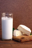Cheese with milk Stock Images