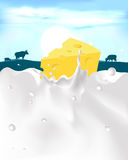 Cheese with milk splash and cow - vector Royalty Free Stock Photos