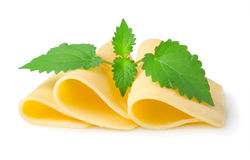 Cheese and mint Royalty Free Stock Images