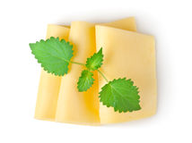 Cheese and mint isolated Stock Photography