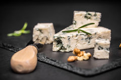 Cheese with mold Royalty Free Stock Photos