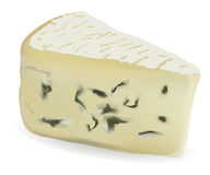 Cheese with a mould Stock Images