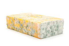Cheese with mould. Isolated on a white background Royalty Free Stock Photo