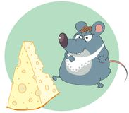 Cheese and mouse Stock Images