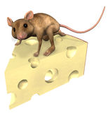 Cheese Mouse. Brown Mouse with piece of Cheese (isolation on a white background Stock Photo