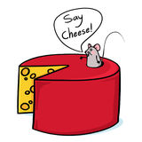 Cheese and mouse cartoon. Say Cheese!; Cheese and mouse illustration Stock Images