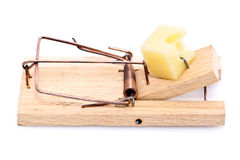Cheese in mousetrap Stock Photos