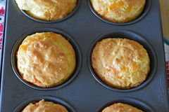 Cheese muffin. A batch of homemade cheese muffin, low carb recipe Stock Images