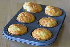 Cheese muffin. A batch of homemade cheese muffin, low carb recipe Royalty Free Stock Photography