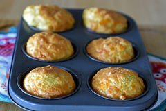 Cheese muffin Royalty Free Stock Photography