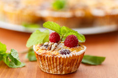 Cheese Muffins with berries Royalty Free Stock Image