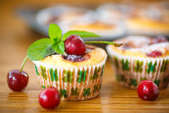 Cheese muffins with cherries Stock Images