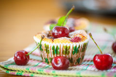 Cheese Muffins With Cherries Royalty Free Stock Photography