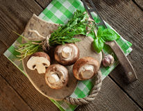 Cheese, mushrooms and aromatic herbs on old wooden background stock images