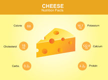 Cheese nutrition facts, cheese with information, cheese vector Stock Image