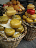 Cheese paradice Royalty Free Stock Images