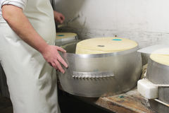 Cheese parmesan Stock Photos